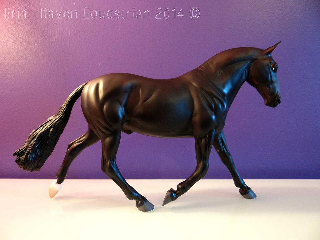 Trooper by Breyer101