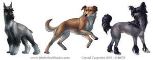 Dog Breeds - Part One