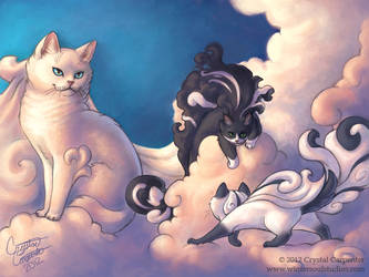 Cumulous Cats - Morning Storm by soulofwinter