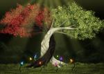 +The Tree Of Eternia+