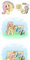 PranksterShy RainbowDash