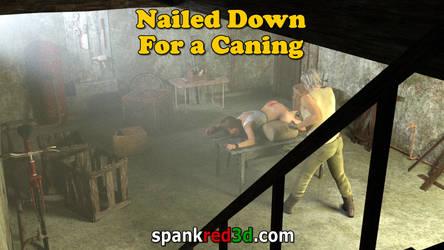 Nailed Down - (Locked Down)