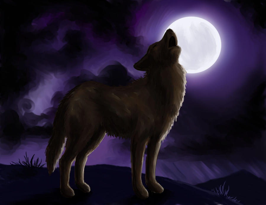 wolf howling at the moon by nienor