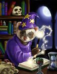 Wizard ferret