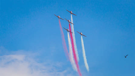 Polish airplane group during their show