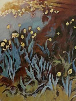 Sudden Daffodils
