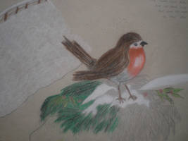 Robin Red Breast of winter by nathanhamilton89