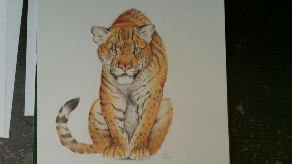 It Looks more like a Tiger by cayotze