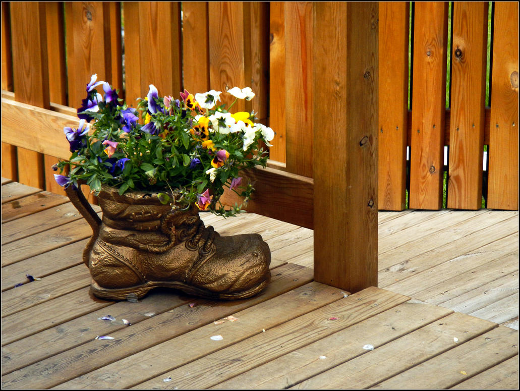 Icelandic flowerbed by NikolaiMalykh