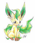 A Simple Leafeon