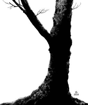 A New Leafless