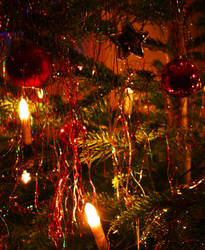 Merry Christmas by MissJaseyRae