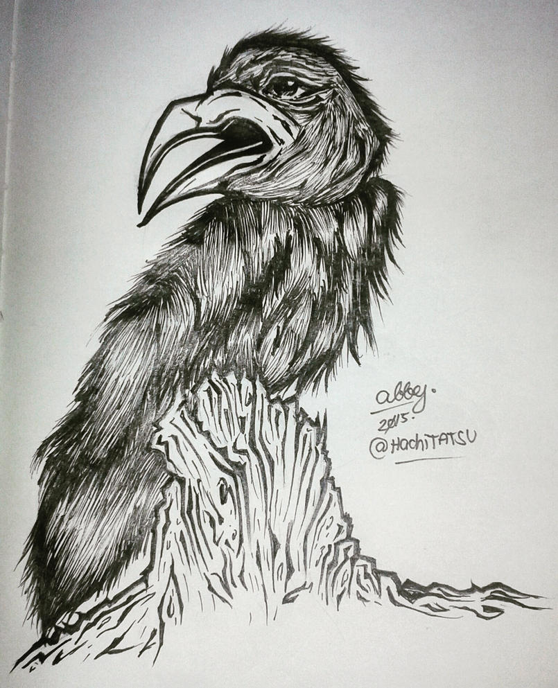 Inktober/Drawlloween 2015 DAY11: Raven by HachiTATSU