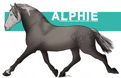 ALPHIE REFERENCE SHEET by catechize