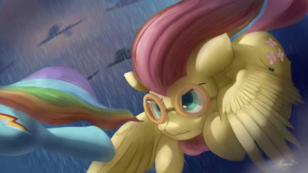 Hurricane shy