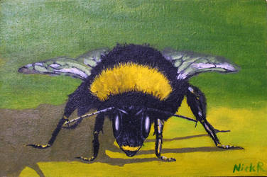 Bumble Bee (SOLD) by nickryall