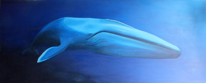 Blue Whale (sold) by nickryall