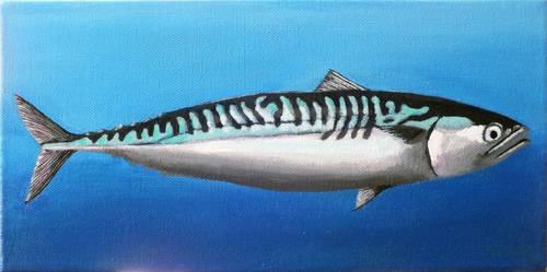 One Mackerel