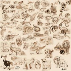 Sangria project : Fauna sketch dump