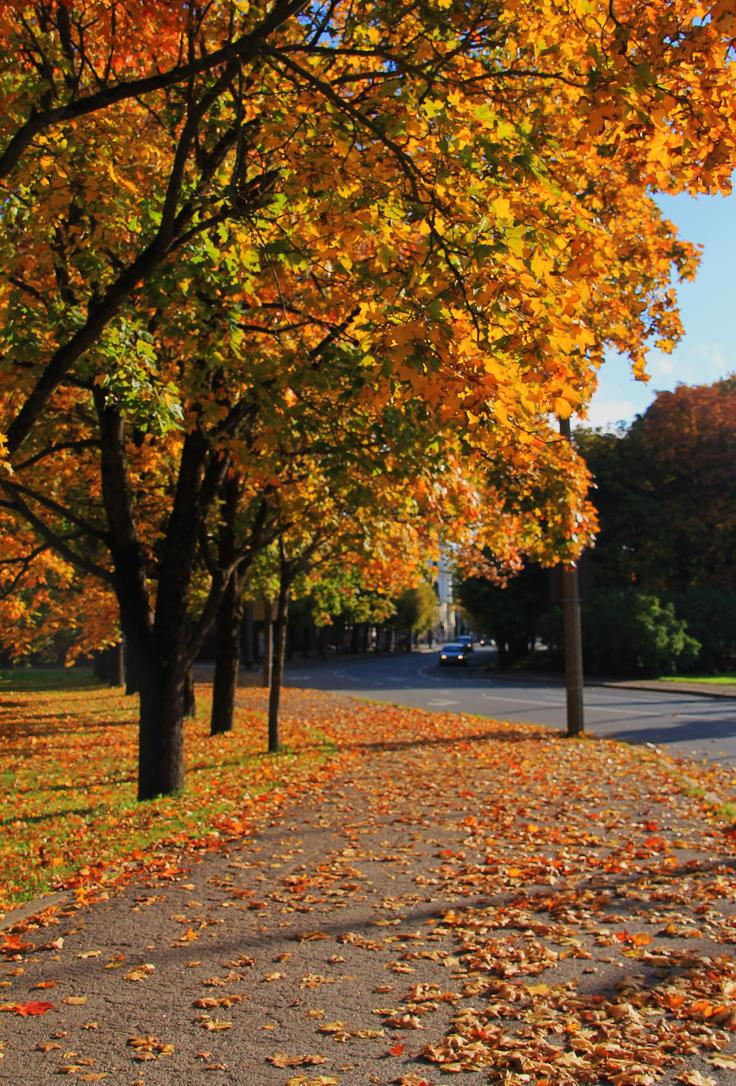 Autumn in Parnu by 0n3g1rl