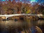 Central Park by jenniferhl72