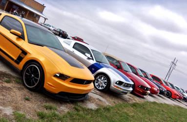 Mustang gang by jenniferhl72