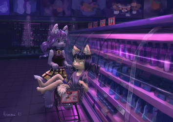 groceries by lluumi