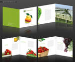 Techno Green Brochure