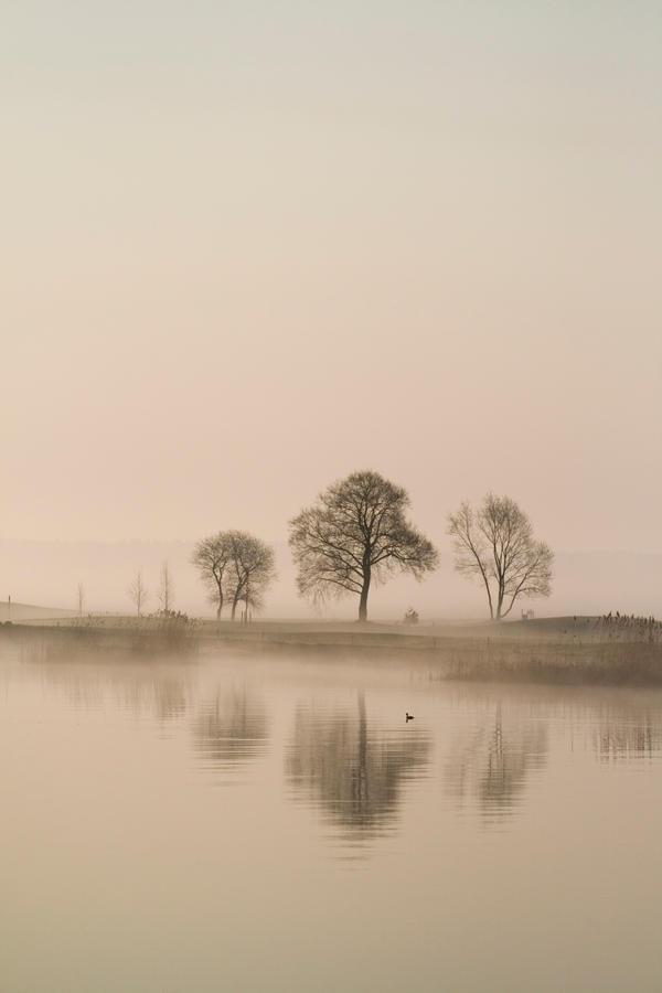 Misty lake by Fanfnirr