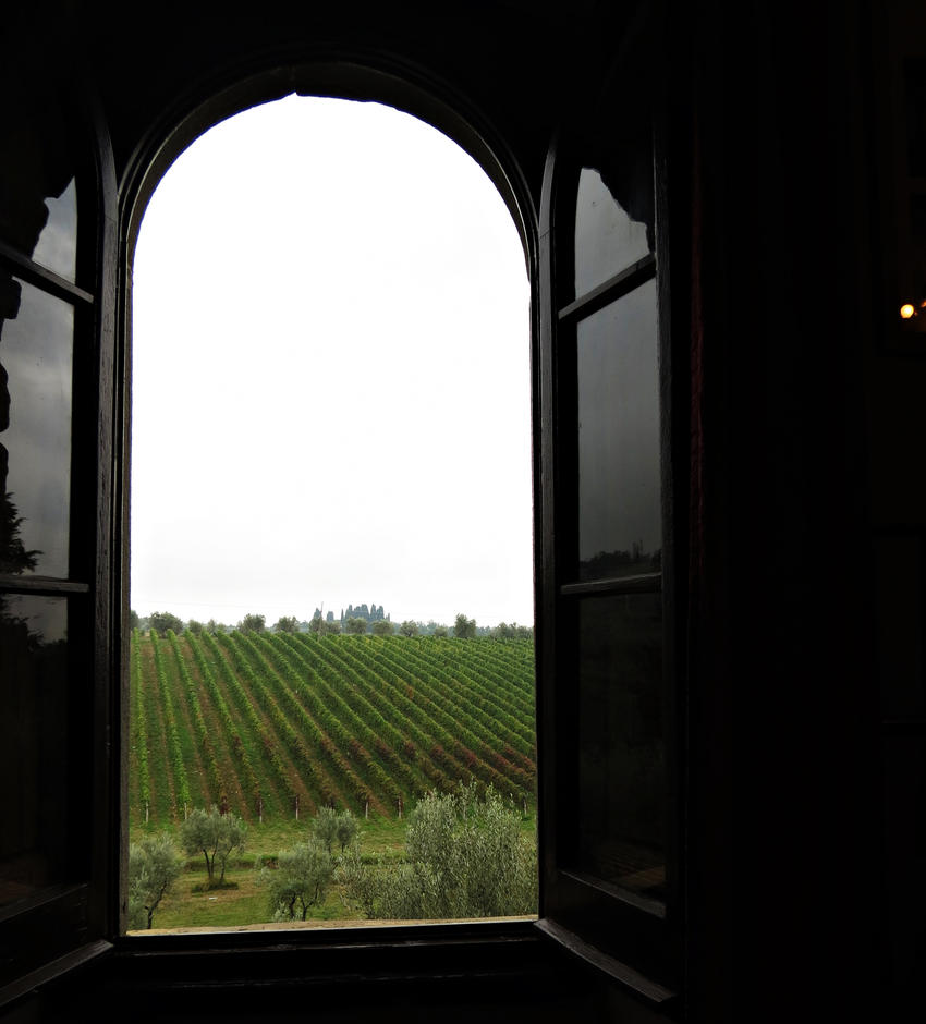 Window and Wine by skylark1983