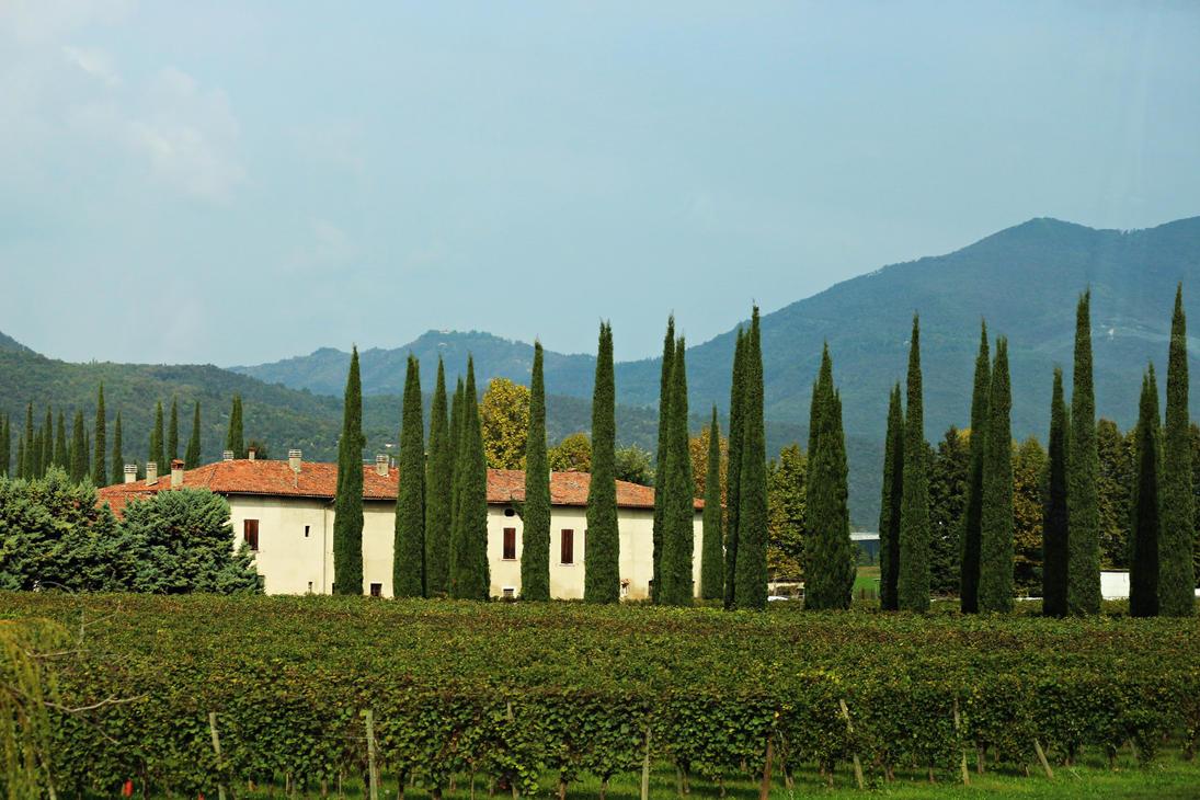 Tuscany by skylark1983