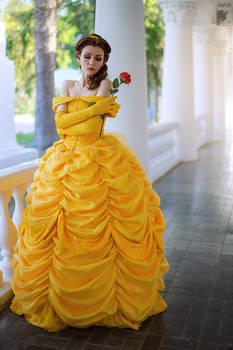 Princess's dream