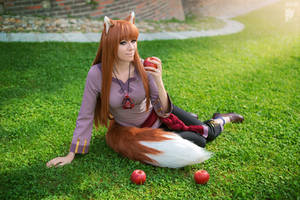 Spice and Wolf by Ryoko-demon