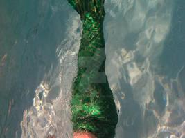 Mermaid tail 2
