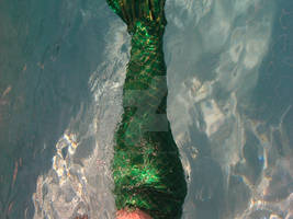 Mermaid tail 2