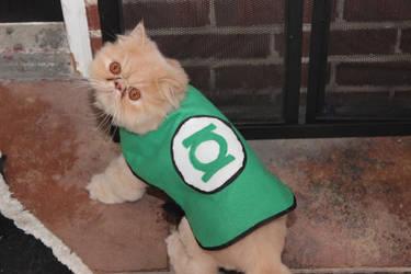 Green Lantern pet coat