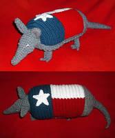 Texas Armadillo by W0IfDreamer