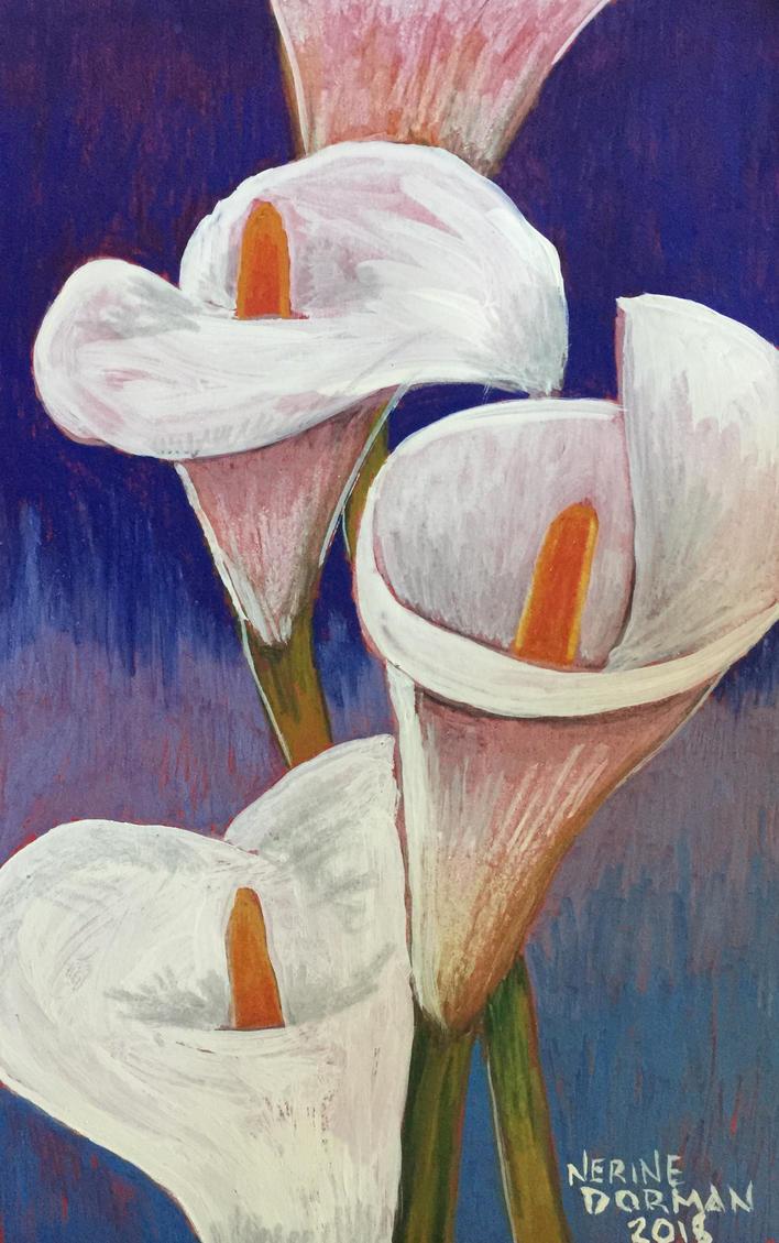 Arum lilies by Nefretkheperi