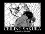 Ceiling Sakura