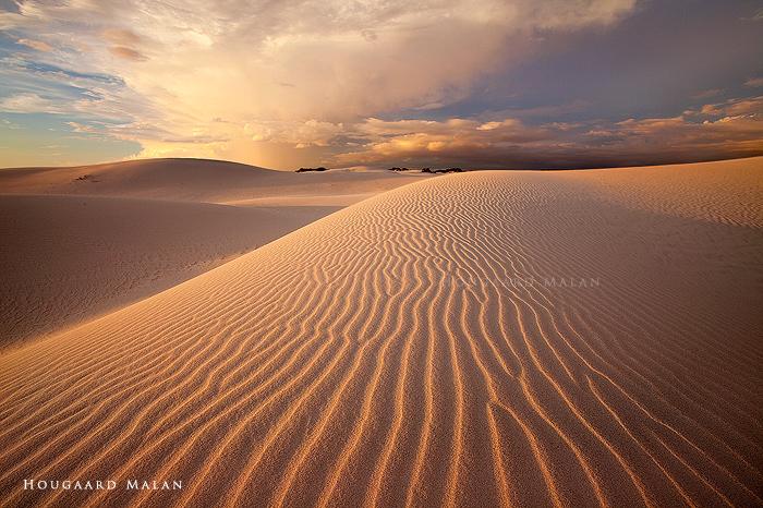 Desert Storm 3 by hougaard