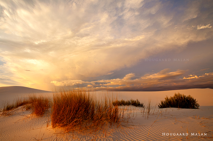 Desert Storm 4 by hougaard