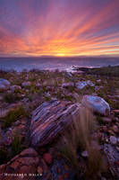 The Cape Peninsula by hougaard