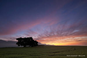 As the Sun Rises by hougaard