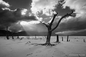 The Graveyard by hougaard