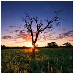 Kalahari Cliche by hougaard