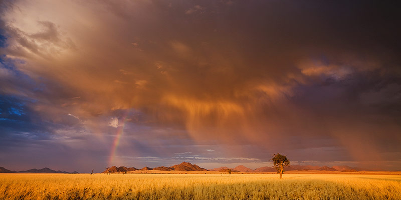 Curtain of Rain by hougaard