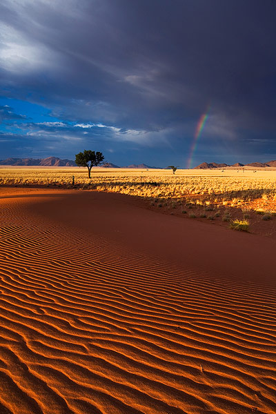 Sign of Hope by hougaard