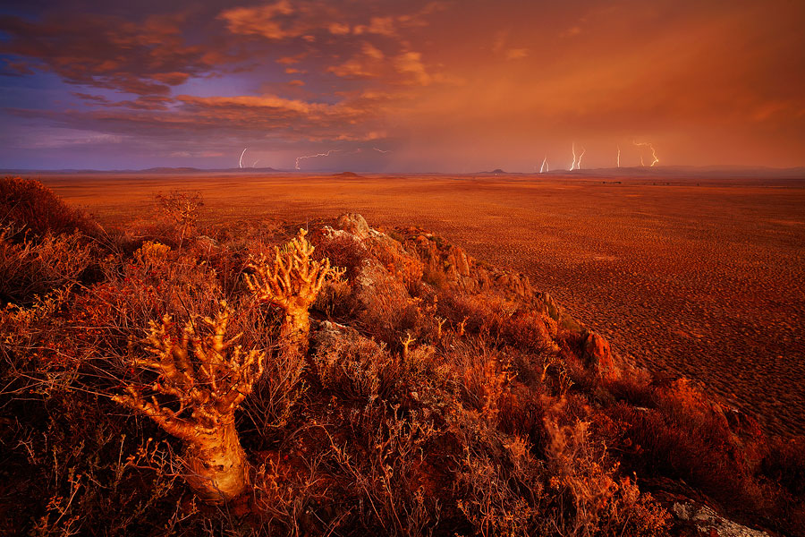 Karoo Blitzkrieg by hougaard