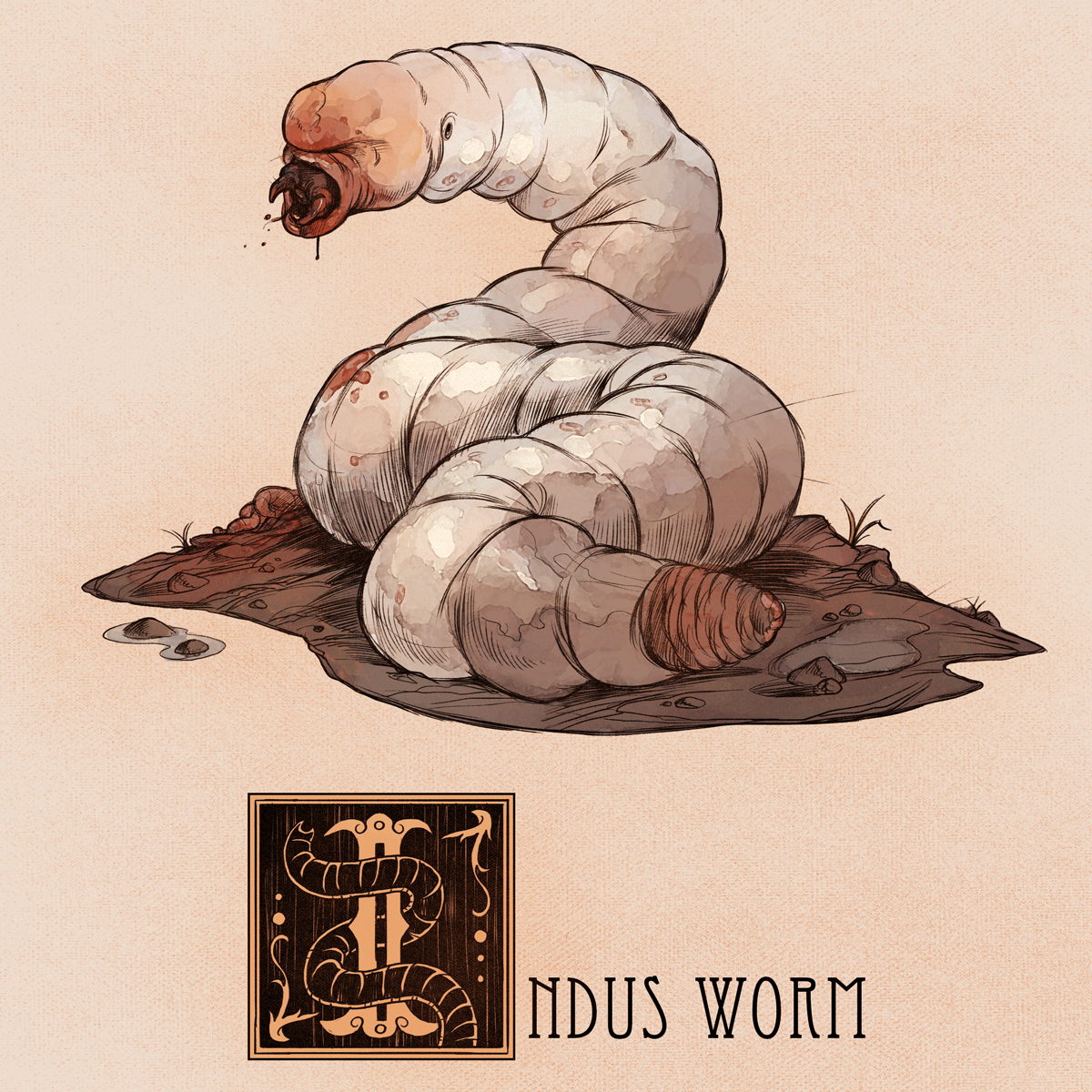 I is for Indus Worm