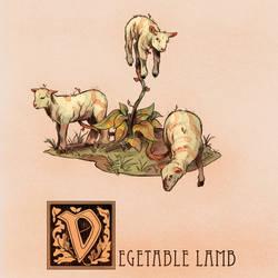 V is for Vegetable Lamb